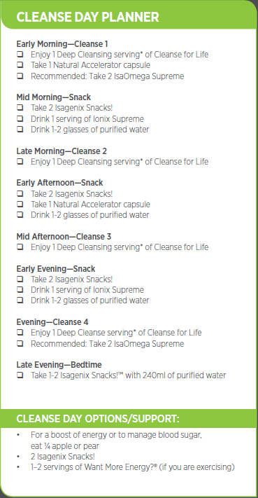 Cleanse Day Planner