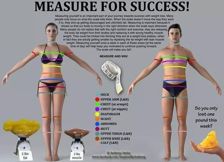 measure-yourself